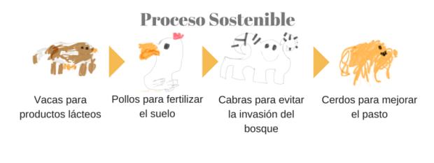 Proceso Sostenible